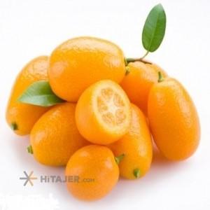Sari Kumquat