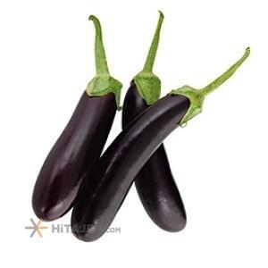 Rudan eggplant