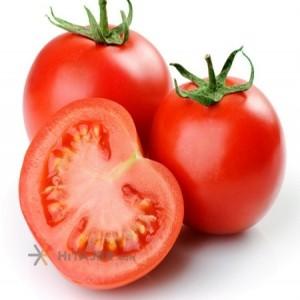 Bushehr Tomato Sakata Seed
