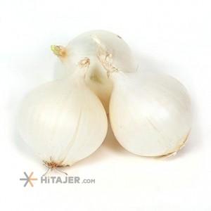 Esfahan White Onion