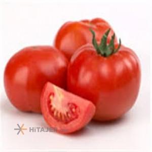 Bushehr Tomato seed 2149