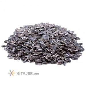 Tabriz Chinese Sunflower Seed