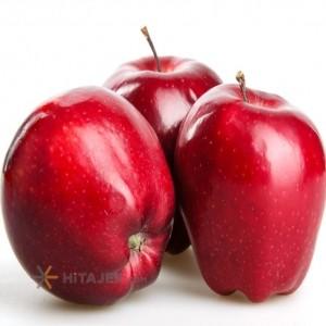 Oshnavieh red apple Iran Export Market
