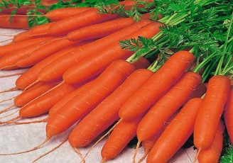 دولت تدبیر به هویج هم رحم نکرد/ هویج کیلویی ۱۴ هزار و ۵۰۰ تومان؟!