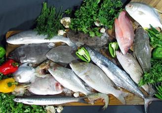 رشد روز افزون صادرات ماهی از آذربایجان غربی