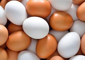 قیمت جدید تخم مرغ در مرغداری و بازار