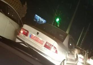 برکناری یک مدیر دولتی به دلیل سگگردانی با خودروی دولتی